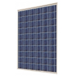 PV модуль SUNRISE SOLARTECH, 245 Wp, POLY